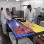 Labelling & Tracability